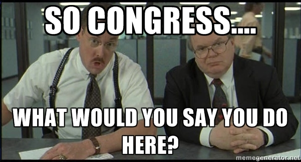 congress, what would you say you do here?