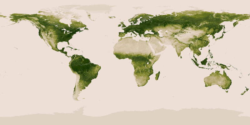 world map of vegetation on earth