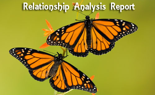 relationship analysis report - astrolika.com