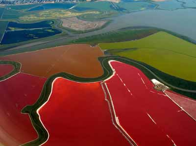 cargill salt ponds in san francisco bay