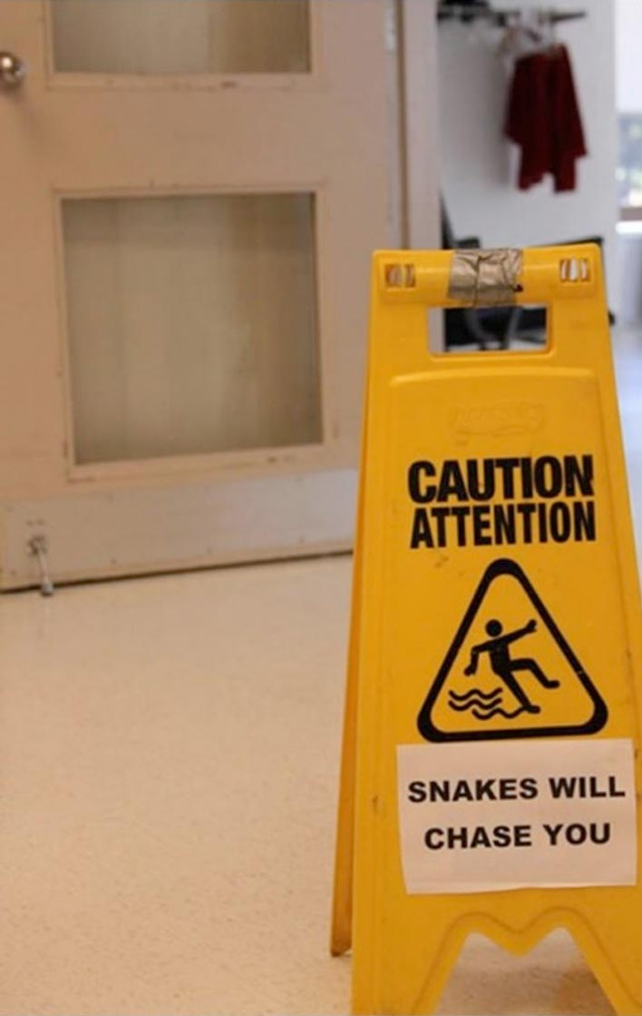 caution: snakes will chase you