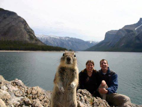 squirrel photobombs some hikers' pic